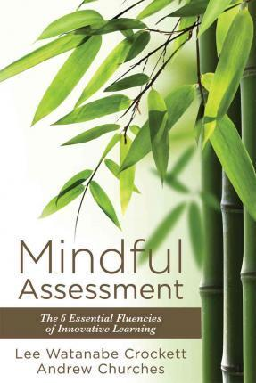 Mindful Assessment Cover Image