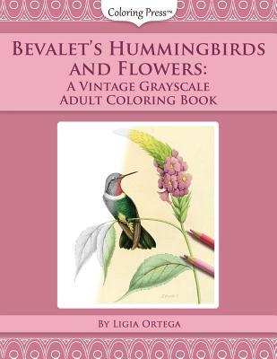 Bevalet's Hummingbirds and Flowers