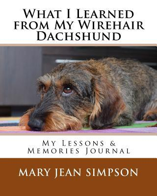 What I Learned from My Wirehair Dachshund  My Lessons & Memories Journal