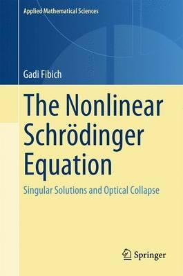 The Nonlinear Schroedinger Equation