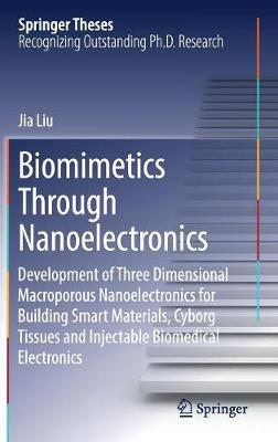 Biomimetics Through Nanoelectronics