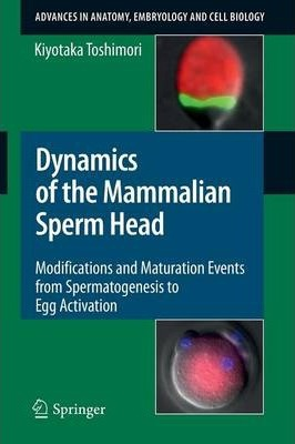 Dynamics of the Mammalian Sperm Head: Modifications and Maturation Events From Spermatogenesis to Egg Activation