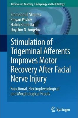 Stimulation of Trigeminal Afferents Improves Motor Recovery After Facial Nerve Injury: Functional, Electrophysiological and Morphological Proofs