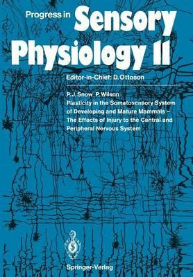 Plasticity in the Somatosensory System of Developing and Mature