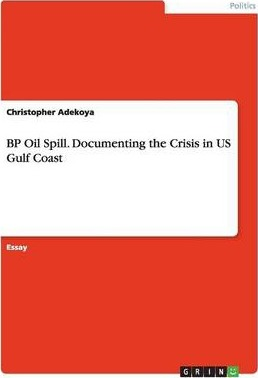 Bp Oil Spill Documenting The Crisis In Us Gulf Coast  Christopher  Bp Oil Spill Documenting The Crisis In Us Gulf Coast Proposal Essay Ideas also Write My Speech  Fifth Business Essay