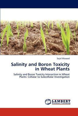 Salinity and Boron Toxicity in Wheat Plants