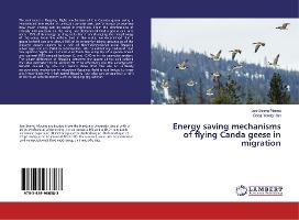 Energy saving mechanisms of flying Canda geese in migration