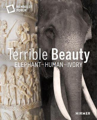 Terrible Beauty Cover Image