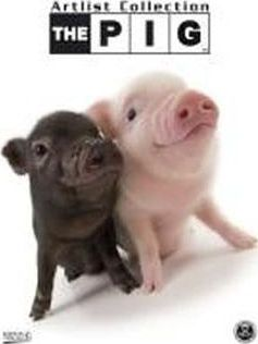 The Pig 2012. Artlist Collection
