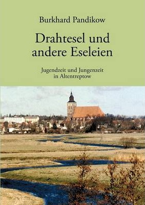 Drahtesel und andere Eseleien Cover Image
