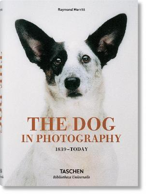 The Dog in Photography 1839-Today Cover Image
