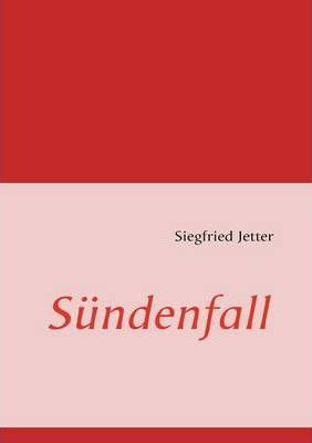 S Ndenfall Cover Image