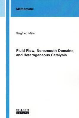 Fluid Flow, Nonsmooth Domains, and Heterogeneous Catalysis: 1