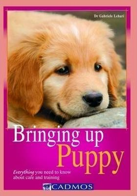 Bringing Up Puppy: Everything You Need to Know