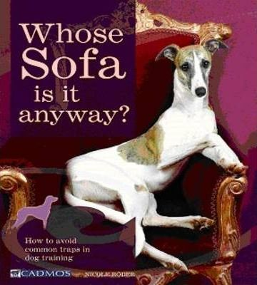 Whose Sofa is it Anyway?