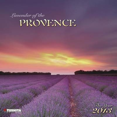 Lavender of the Provence 2013