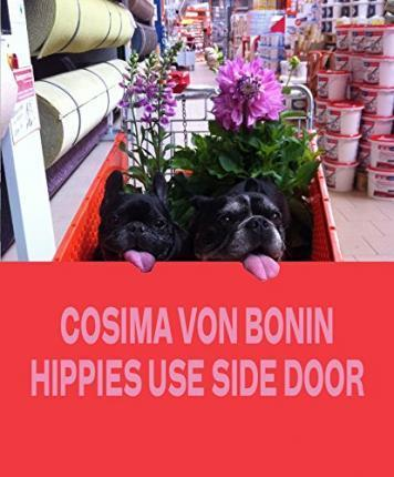 Cosima Von Bonin Hippies Use Side Door