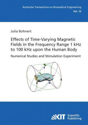 Effects of Time-Varying Magnetic Fields in the Frequency Range 1 kHz to 100 kHz upon the Human Body : Numerical Studies and Stimulation Experiment