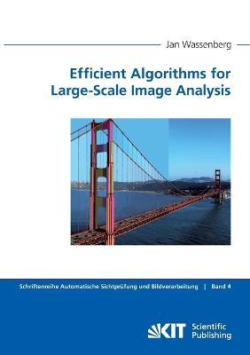 Efficient Algorithms for Large-Scale Image Analysis