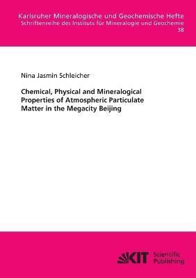 Chemical, Physical and Mineralogical Properties of Atmospheric Particulate Matter in the Megacity Beijing