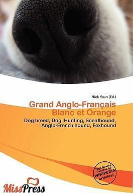 Grand Anglo-Fran Ais Blanc Et Orange
