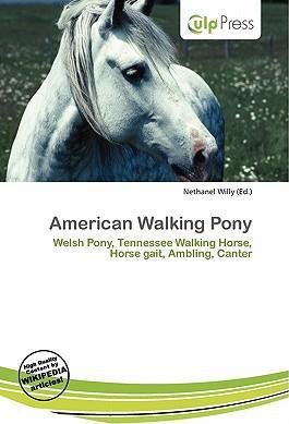 American Walking Pony