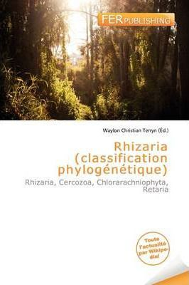 Rhizaria (Classification Phylog N Tique)