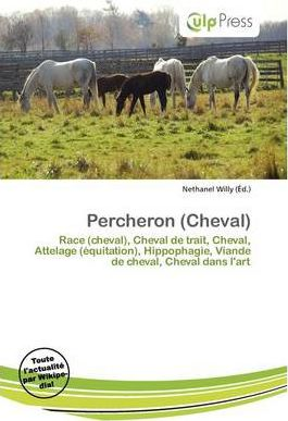 Percheron (Cheval)