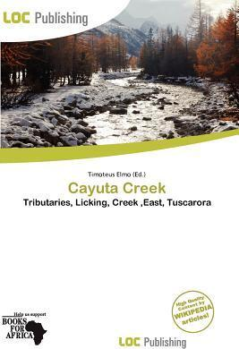 Cayuta Creek
