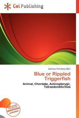 Blue or Rippled Triggerfish