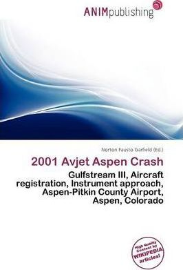 2001 Avjet Aspen Crash