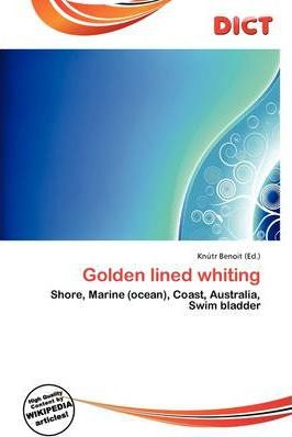 Golden Lined Whiting