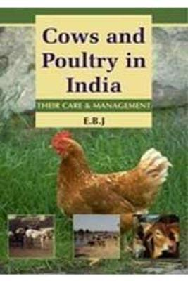 Cows and Poultry in India