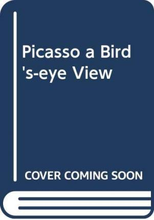 Picasso a Bird's-eye View
