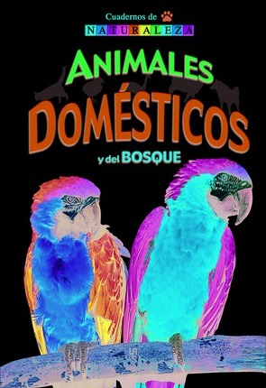 Animales domesticos y del bosque/ Pets and Forest Animals