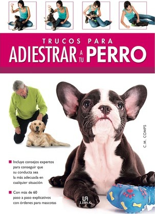 Trucos para adiestrar a tu perro / Tips for Training your Dog
