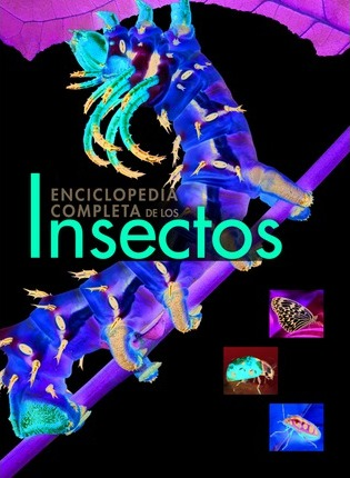 Enciclopedia completa de los insectos / The New Encyclopedia of Insects and their Allies