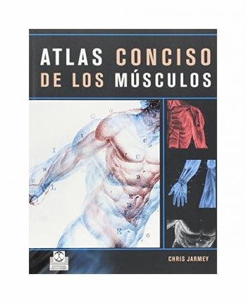 Atlas conciso de los musculos/ The Concise Atlas Of Muscles