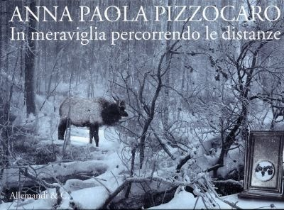 Anna Paola Pizzocaro. In meraviglia percorrendo le distanze. Walking Distances in Wonder