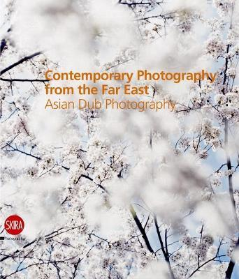 Contemporary Photography from the Far East:Asian Dub Photography