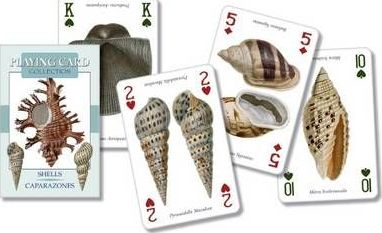 Shells Playing Cards Pc28