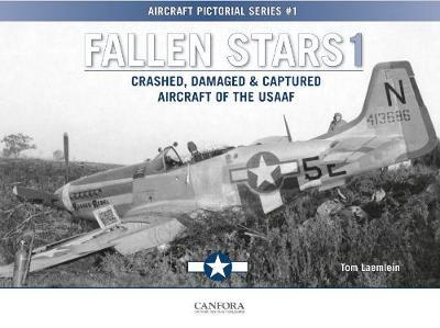 Fallen Stars 1 : Crashed, Damaged & Captured Aircraft of the USAAF