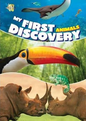 My First Discovery Animals
