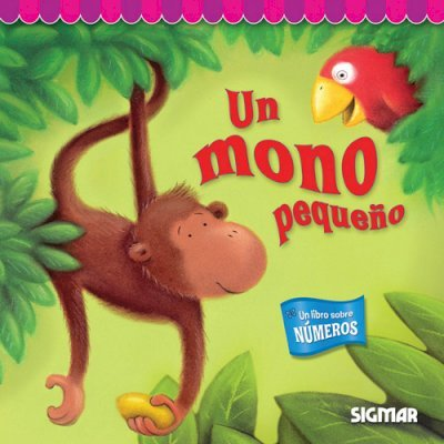Un mono pequeno / A little monkey