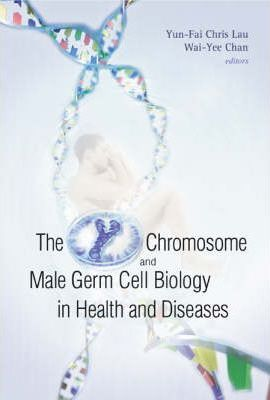 Y Chromosome And Male Germ Cell Biology In Health And Diseases, The