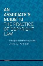 An Associate's Guide to the Practice of Copyright Law [Paperback]