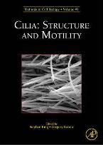 Cilia: Structure and Motility: Volume 91