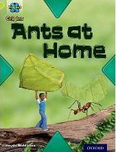 Project X Origins: Lime Book Band, Oxford Level 11: Underground: Ants at Home