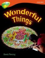 Oxford Reading Tree: Level 13: Treetops Non-Fiction: Wonderful Things