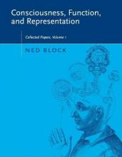 Consciousness, Function, and Representation: Volume 1